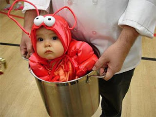 lobster-baby-costume