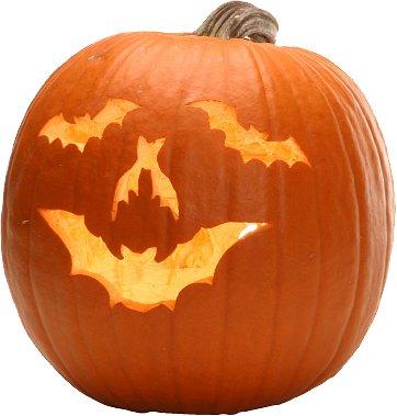 pumpkin-bats